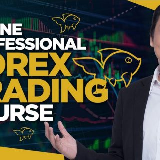 Forex Trading Course by Adam Khoo